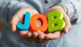 Come leggere i dati (molto buoni) sull'occupazione